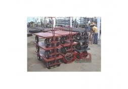 Carrinho Plataforma carga 800 kg